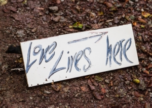 "wedding sign saying ""love lives here"""